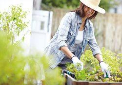 Gardening Lifestyle